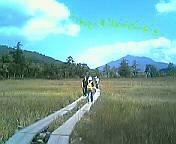 20050918_65388.jpg