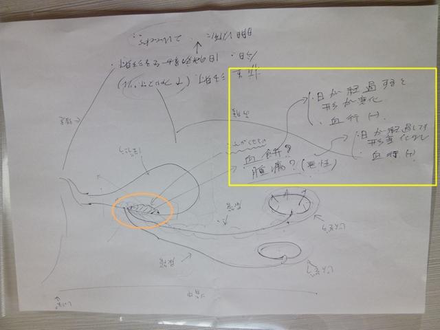 2013.11.17  (3)-1.JPG