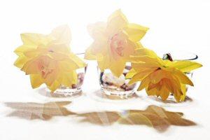 s_easter-flowers.jpg