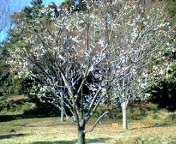 20060211_142008.jpg