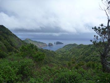 躑躅山からの景色