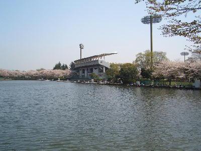 等々力釣り池2