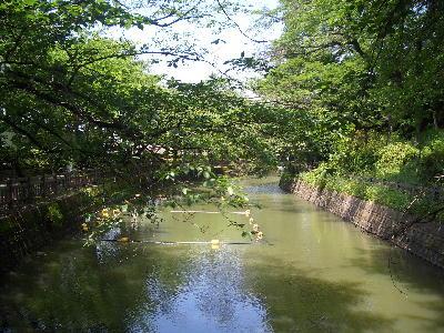 大泉5.31-1.jpg