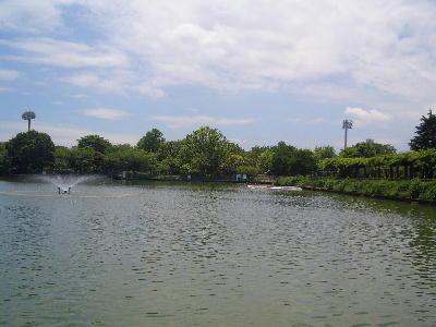 釣り池2.jpg