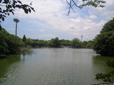 釣り池3.jpg