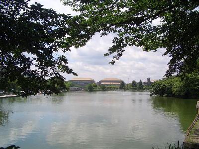 釣り池5.jpg