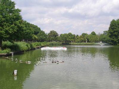 釣り池7.jpg