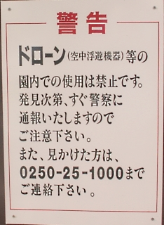 171110_20.jpg