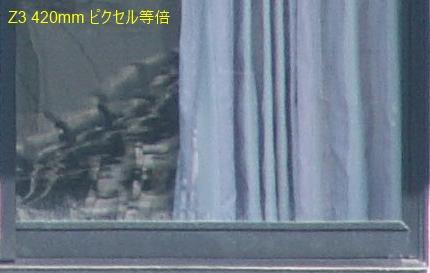 zoom_4.jpg