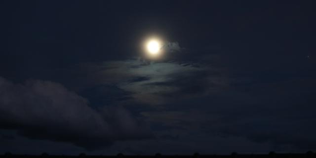 おぼろ月夜_3.jpg