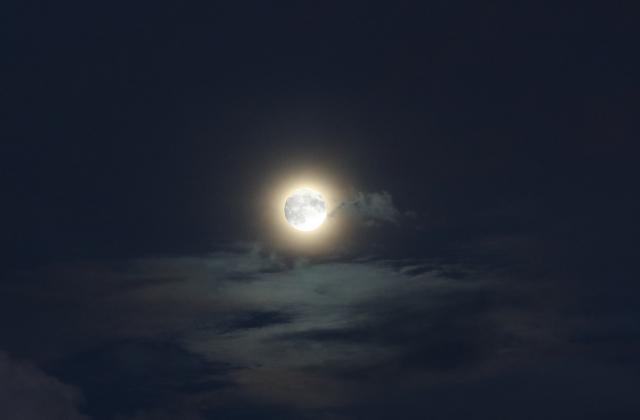 おぼろ月夜_4.jpg