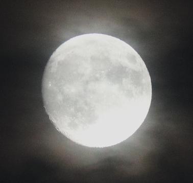 おぼろ月夜_1.jpg