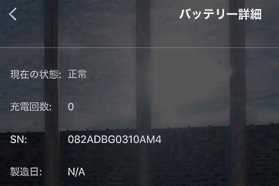 p4_bat_9.jpg