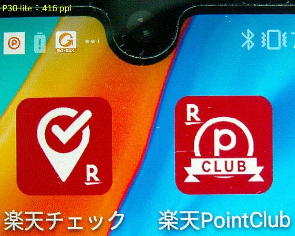 P30_lite_ppi.jpg