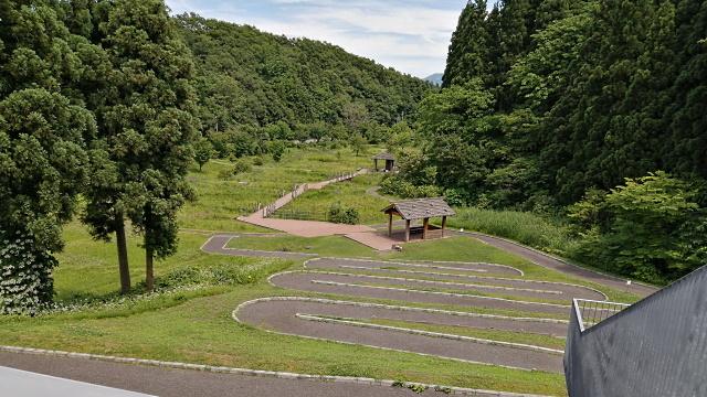 里山ミュージアム_200617_05.jpg
