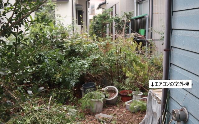 201007_4.jpg
