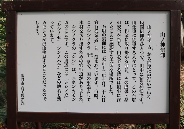 201011_09.jpg