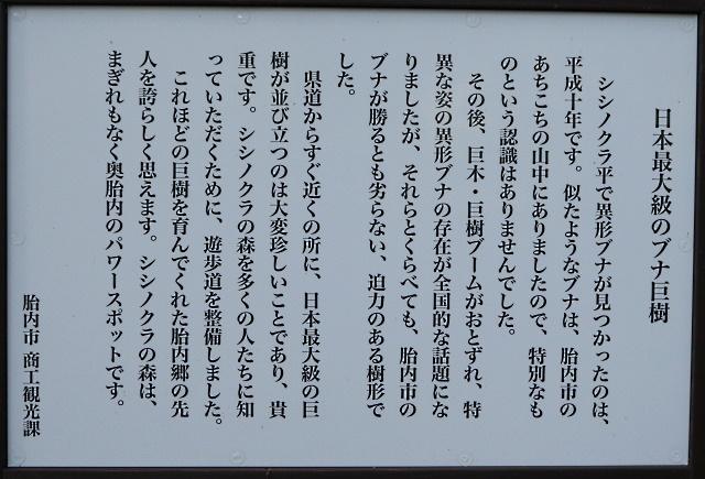 201011_17.jpg