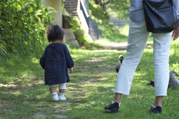 鴨に近づく幼女