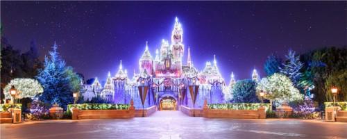 ディズニーの噂・裏技・裏話_一度は行ってみたい海外のディズニークリスマス