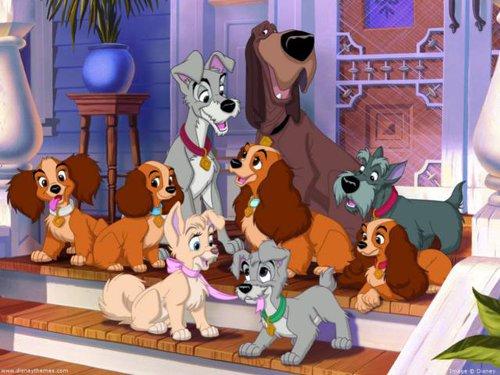 ディズニーの噂・裏技・裏話_「わんわん物語」に登場するレディとトランプは何犬