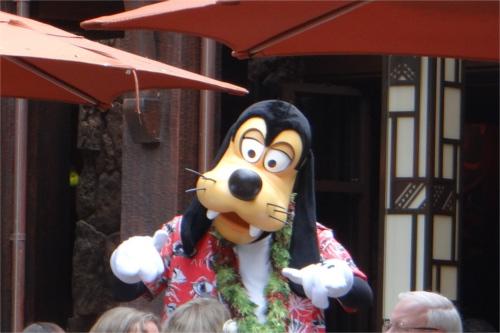 ディズニーの噂・裏技・裏話_アウラニ・ディズニーのグーフィーはどんな帽子をかぶっているのか