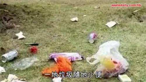 上海ディズニーリゾートの一部エリアを開放した結果・・・早速パーク内にゴミが!落書きが!糞尿が!_1