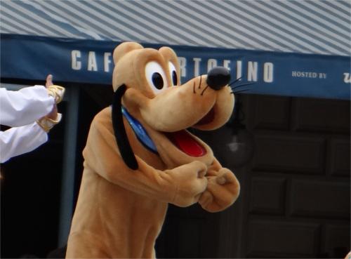 【貴重映像】プルートに初めて会った介助犬の反応
