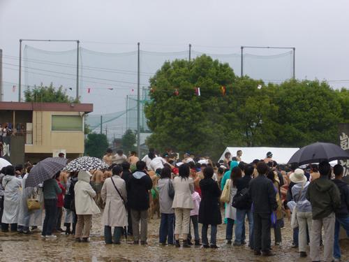 浦和高校体育祭