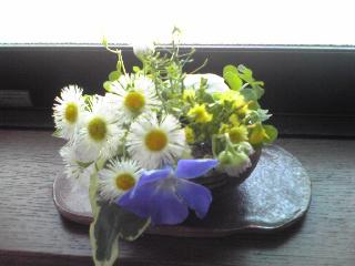 雑草生け花2009年4月