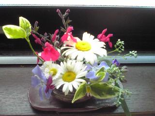 雑草生け花2009年5月