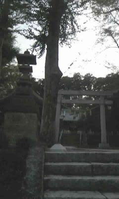 滝之宮神社