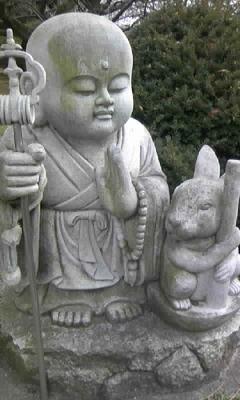 文殊寺のうさぎ