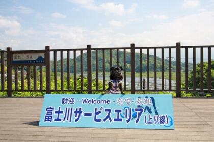富士川SAにて