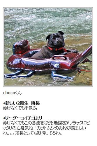 川遊びのチョコ写真です