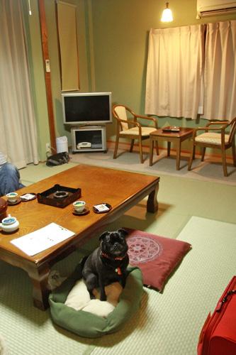 和室です〜