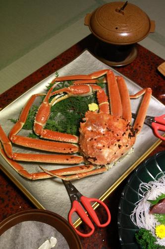 茹でたての越前蟹〜!
