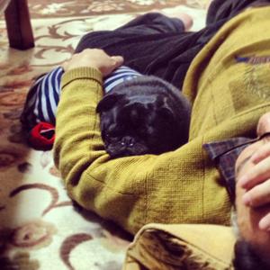 父と添い寝のチョコ