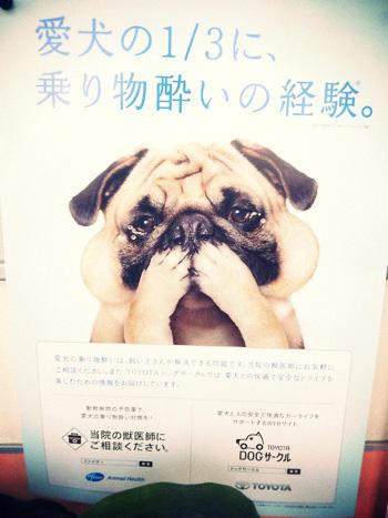 かわゆいポスター