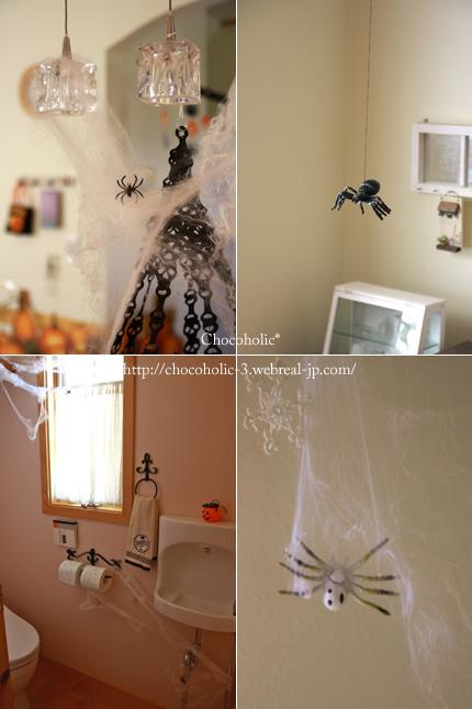 蜘蛛があちこちに