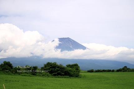 牧場の芝と富士山