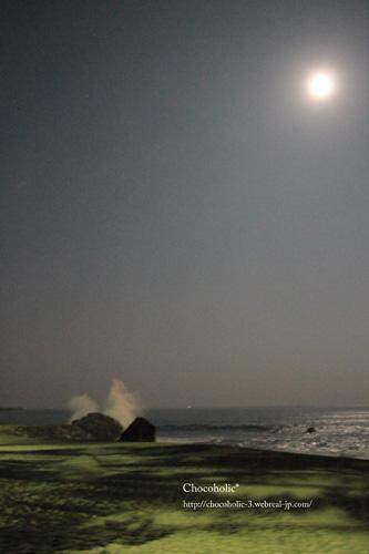 月夜の桂浜