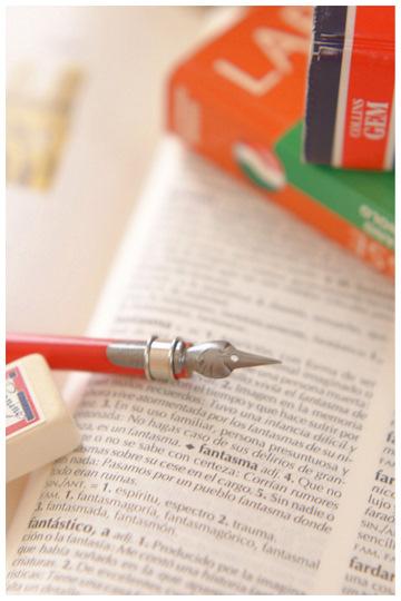 20110728 dictionary-1.jpg