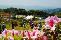 山江つつじ祭り
