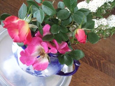 お庭のお花☆