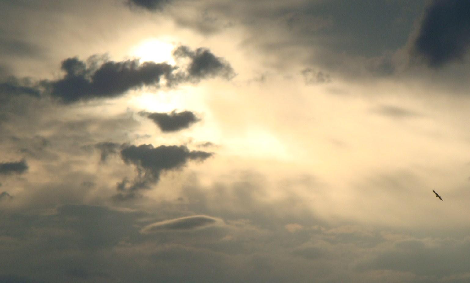 その日の空2008/10/23