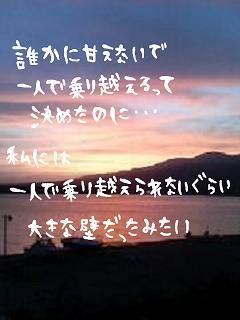 20061208_178483.jpg