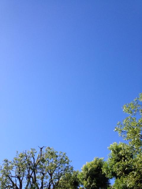 20120819府中も青い空