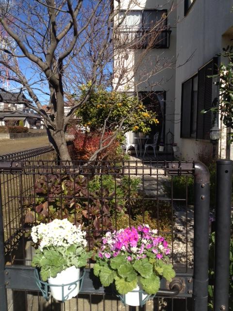 20121210東京グラフィティ取材写真その1