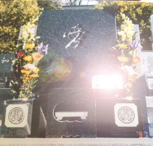 20121210東京グラフィティ取材写真その32切抜き逆光